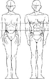 КАК НАУЧИТЬСЯ РИСОВАТЬ АНИМЕ ТЕЛО. как научиться рисовать аниме тело.